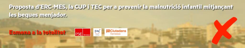 banner_propresolucio_ple29102015_malnutricioinfantil
