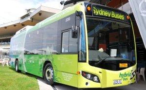 """""""Vam votar a favor de la compra d'autobusos híbrids, perquè seguim defensant polítiques valentes"""""""