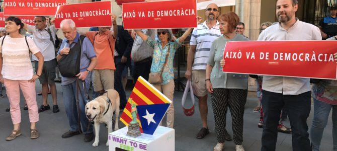 Ple de juny: Referèndum a debat